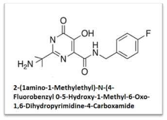2-(1amino-1-Methylethyl)-N-(4-Fluorobenzyl0-5-Hydroxy-1-Methyl-6-Oxo-1,6-Dihydropyrimidine-4-Carboxamide